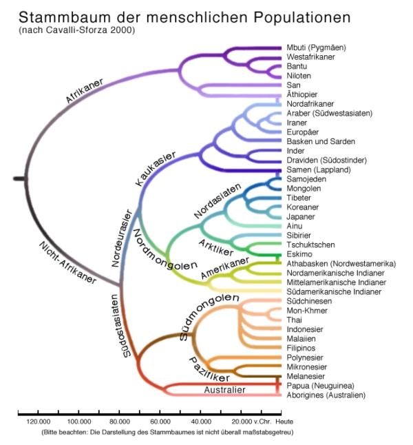 Die Populationen der Menschheit nach Cavalli-Sforza (2000)