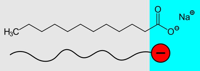 Natriumlaurinat Hydrophober Alkylrest grau und hydrophile Carboxylatgruppe blau Synthetische Tenside
