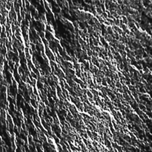 Anionenaustauscher-Membran für die Elektrodialyse - Trockenlagerung