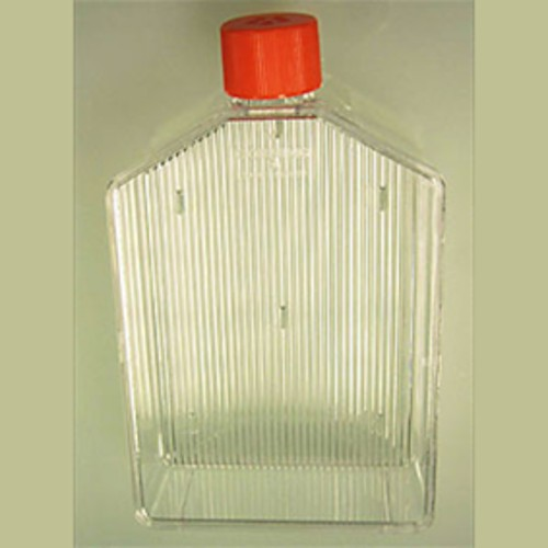 Zellkulturflasche aus PS